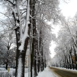 Snow Liberec