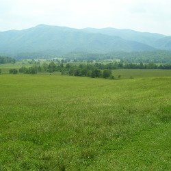 The Great Smoky Mountains (Cades Cove, Tennessee)