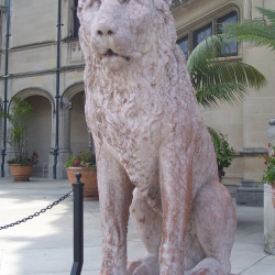 A Lion Guarding The Biltmore House