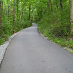 A Road (Percy Warner Park, Nashville, Tennessee)