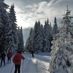 Skiing Liberec