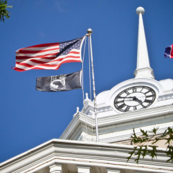 Flags at the Courthouse (Colombia, Tennessee)