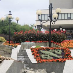Rybnik, Poland flowers